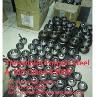 Jual Threadolet Forged Steel A105 Class 3000-
