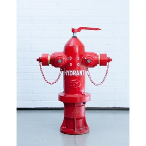 Hydrant Pillar Zeki (Ozeki)