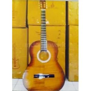 Gitar Folk Polos Skadi 150