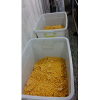 Jagung Manis Pipil - Global Sweet Corn Murah 5