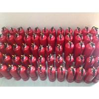 pemadam kebakaran Model dry chemical powder