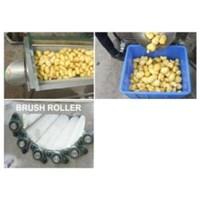 BRUSH ROLLER ROOT FRUIT WASHER/PEELER