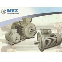 Dinamo elektromotor MEZ