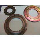 Spiral Wound Gasket CS Carbon Steel 2