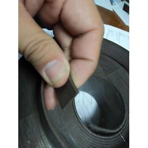 Wear Ring Bronze PTFE