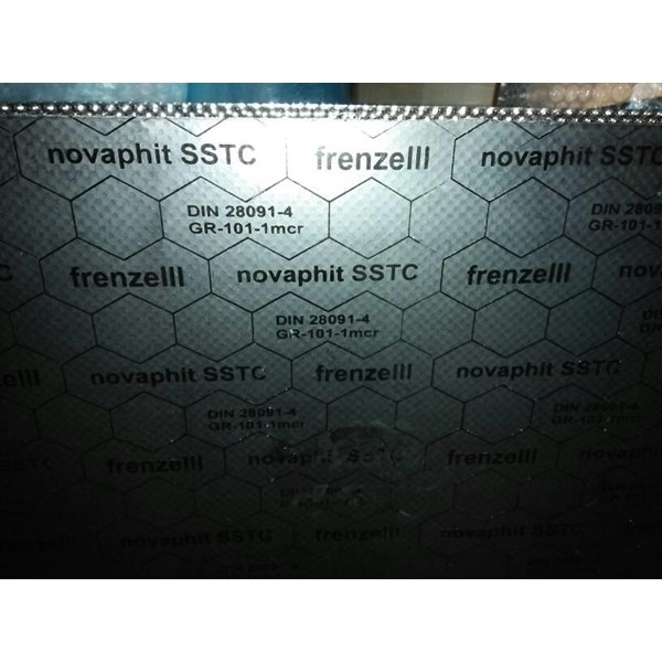 Gasket Nopavit SSTC