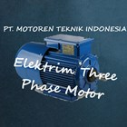 Elektrim Three Phase Induction Motor 1