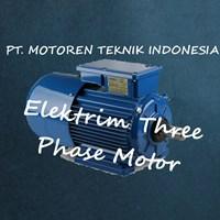 Elektrim Three Phase Induction Motor