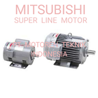 ELECTRIC MOTOR 3 PHASE 1