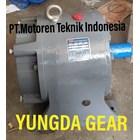 Three Phase Gear Motor  1