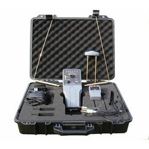 Raider-II Long range detector