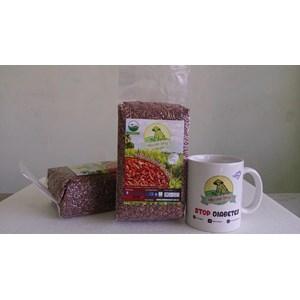 Rice Van Java