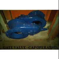 Gate Valve Capoperation 1