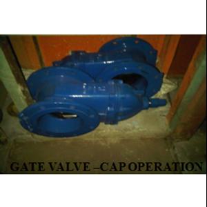 Gate Valve Capoperation
