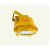 LED Light Fitting 1