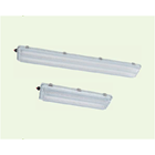 BnY81 Series Explosion-proof Light Fittings for Fluorescent Lamp 1