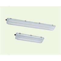 BnY81 Series Explosion-proof Light Fittings for Fluorescent Lamp