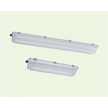 BnY81 Series Explosion-proof Light Fittings for Fl