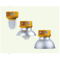 BnD81 Series Explosion-proof Light Fittings 1