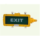 BAYD Series Explosion-proof Emergency Exit Light Fittings 1
