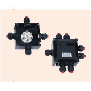 BXJ8050-20/6 Series Junction Boxes