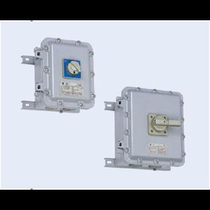 BLK Series Explosion-proof Motor Swithces (Ex d IIB)