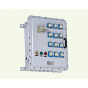 BXM(D)81 Series Explosion-proof Illumination (Power) Distribution Boxes