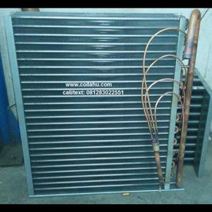 Coil Dehumidifier