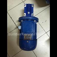 Distributor Worm Gear Atau Gear Motor Y Mrv Hollow Shaft Yuema 3