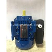 Jual Dinamo Atau Elektro Motor Adk China 2