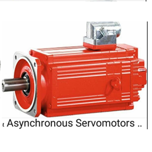 Asynchronous Servomotors