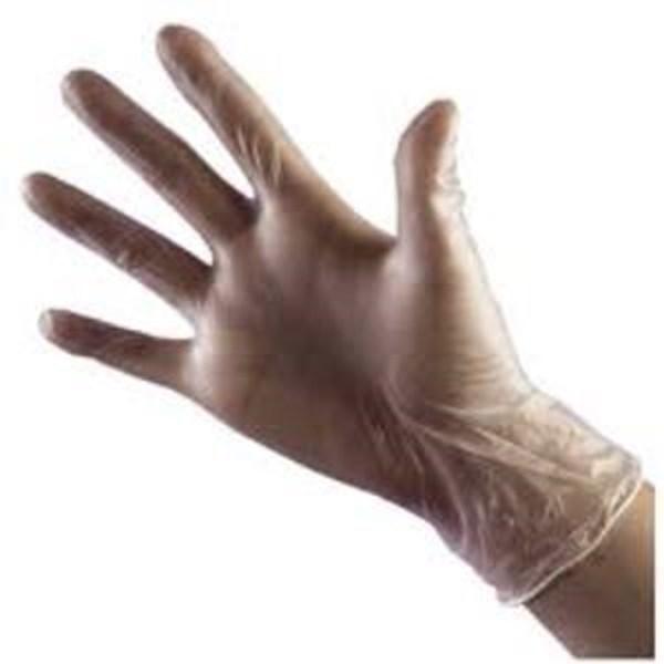 Glove Vinyl Clear Powder Free