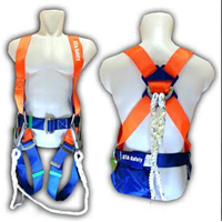 Body Harness 2