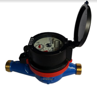 Water Meter Itron High 1