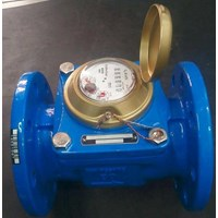 Water Meter Powogaz 50mm (2 inch)