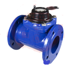 Water Meter Westechaus 3 inch (80mm)