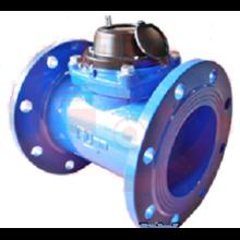 Water Meter Westechaus 6 Inch (150 MM)