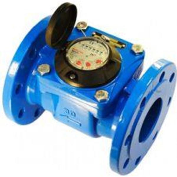 Water Meter Powogaz air dingin DN80 3 inch