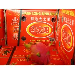Buah Naga Merah/Dragon Fruit Import