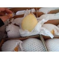 Distributor Buah Pir/Pear China Dibao 3