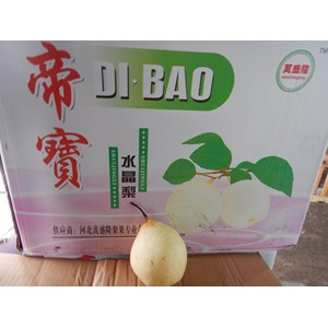 Buah Pir/Pear China Dibao