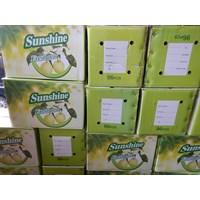 Buah Pear Sunshine
