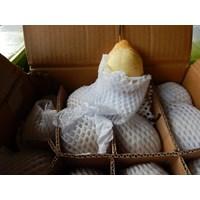 Jual Buah Pir/Pear Sunshine 2