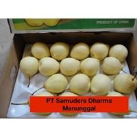 Jual Buah Segar Pir Manis/Sweet Pears China 2