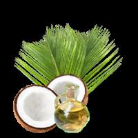 Sell Minyak Nabati Dan Hewani (Minyak Kelapa)