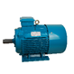 Induction Motor Titan B3