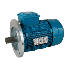 Induction Motor Titan B5