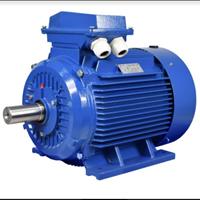 Standard Low Voltage Motor 1