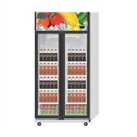 RSA JADE Kulkas Showcase Display Cooler 2 doors 860 Liter