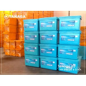 Tanaga Cold Storage